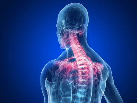 neck pain shoulder blades